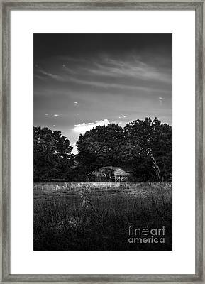 Barn And Palmetto-bw Framed Print