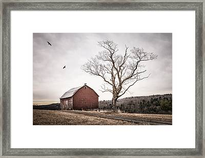 barn and tree - New York State Framed Print by Gary Heller
