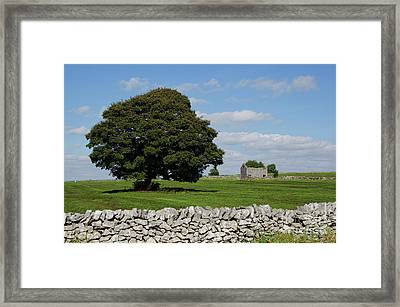 Barn And Tree Framed Print by Steev Stamford