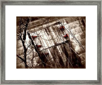 Barn Door Framed Print by Julie Hamilton