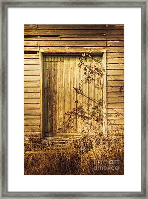 Barn Doors And Hanging Vines Framed Print