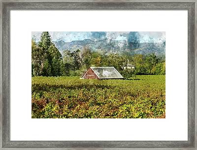 Barn In A Vineyard Framed Print by Brandon Bourdages