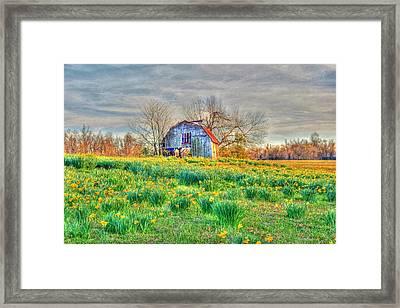 Barn In Field Of Flowers Framed Print