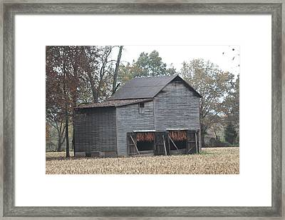 Barn In Kentucky No 99 Framed Print