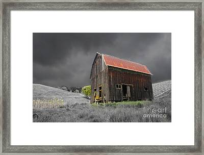 Barn Life Framed Print by TK Goforth