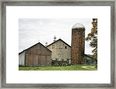 Barn On The Georgia Shore Road Framed Print by Deborah Benoit