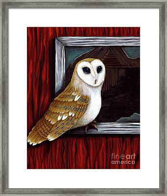 Barn Owl Beauty Framed Print