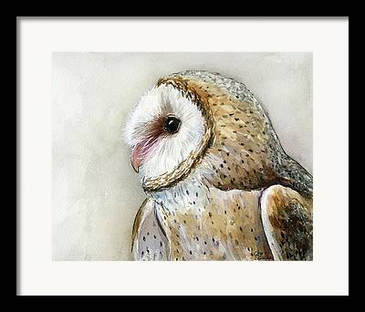 Owl Eyes Framed Prints