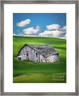 Barn Ruin Framed Print by Inge Johnsson