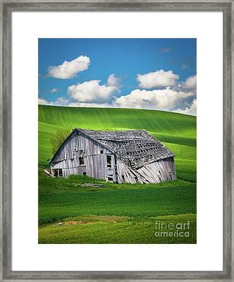 Barn Ruin Framed Print