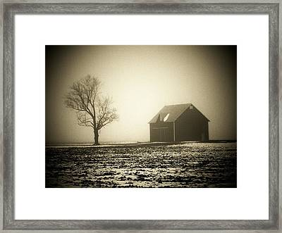 Barn Tree  Fog Framed Print by Michael L Kimble