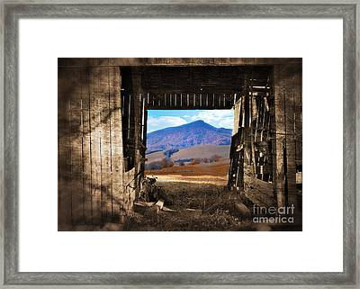 Barn With A View Framed Print by Kathy Jennings
