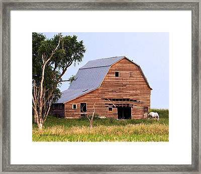 Barn With White Horse Framed Print by Don Durfee