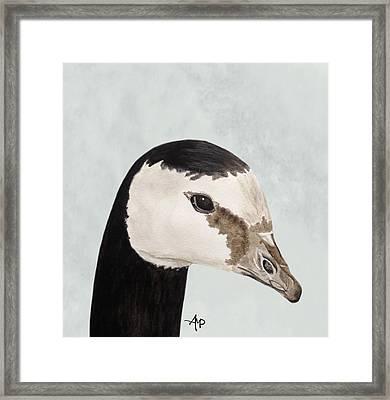Barnacle Goose Portrait Framed Print by Angeles M Pomata