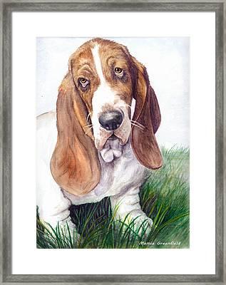 Barney Framed Print by Mamie Greenfield