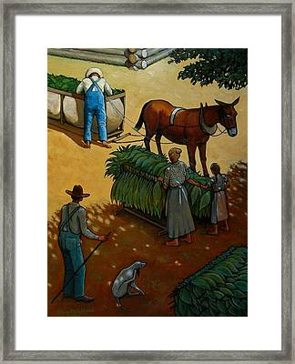 Barnin Tobacco Framed Print by Doug Strickland