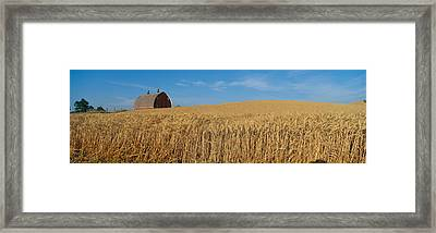 Barns And Wheat Fields, S.e. Washington Framed Print by Panoramic Images
