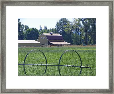 Barns Framed Print by Laurie Kidd