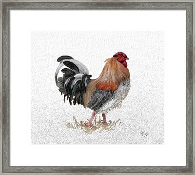 Barnyard Boss Framed Print