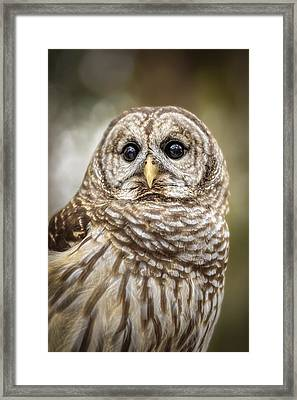 Framed Print featuring the photograph Hoot by Steven Sparks