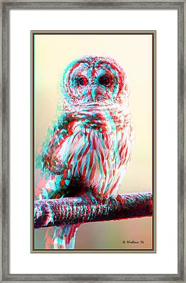 Barred Owl - Use Red-cyan 3d Glasses Framed Print by Brian Wallace