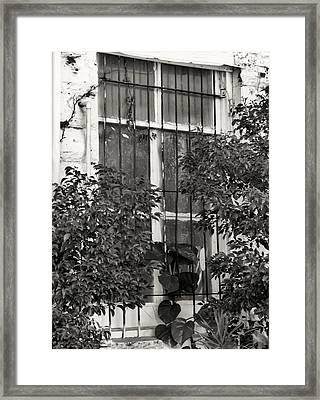 Barred Window Framed Print by Rosalie Scanlon