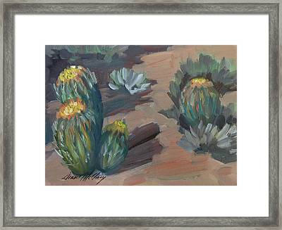 Barrel Cactus At Tortilla Flat Framed Print