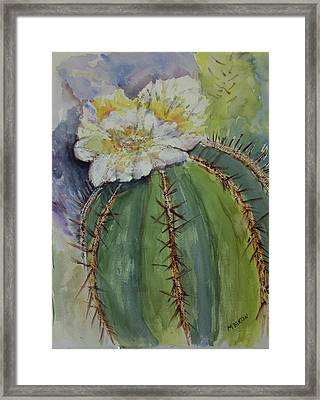 Barrel Cactus In Bloom Framed Print by Marilyn Barton