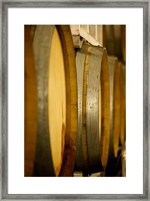 Barrels Of Fun Framed Print by Lisa Knechtel