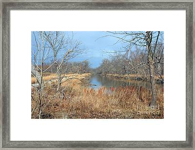 Barren Framed Print by Jeannie Burleson