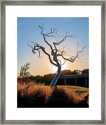Barren Light - Crystal Bridges Museum Of American Art Framed Print