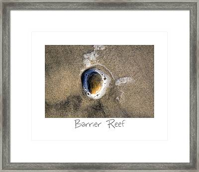 Barrier Reef Framed Print by Peter Tellone