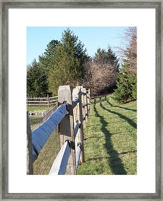 Barriers Framed Print by Vijay Sharon Govender