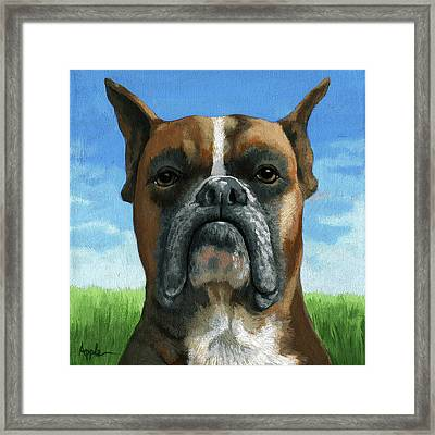 Barry Boxer Framed Print