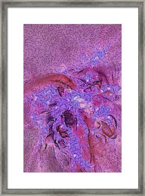 Barse Raw  Id 16097-212727-18250 Framed Print
