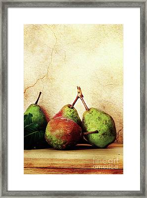Bartlett Pears Framed Print