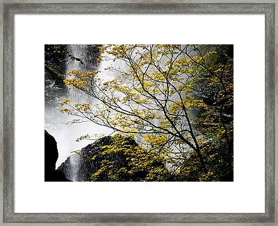 Base Of The Falls. Framed Print
