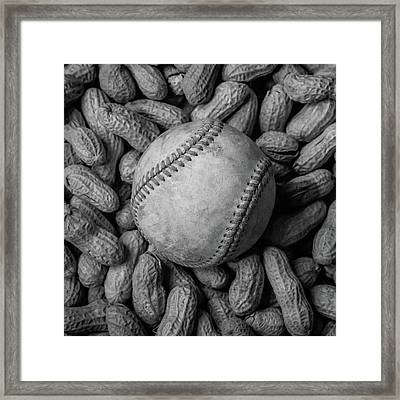 Framed Print featuring the photograph Baseball And Peanuts Black And White Square  by Terry DeLuco