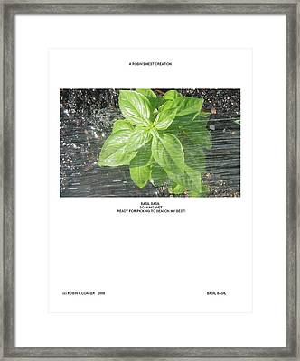 Framed Print featuring the photograph Basil Basil by Robin Coaker