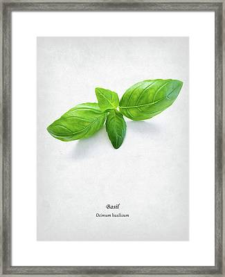 Basil Framed Print by Mark Rogan