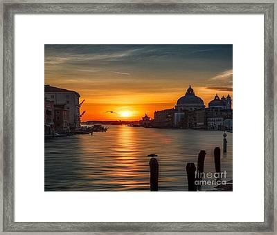 Basilica Di Santa Maria Dela Salute, Venice Framed Print