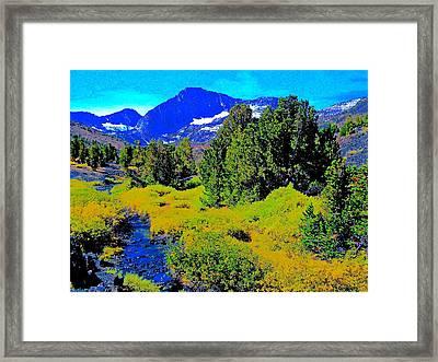 Whitebark Pines Creekside Sierra Nevada 11000 Feet Framed Print