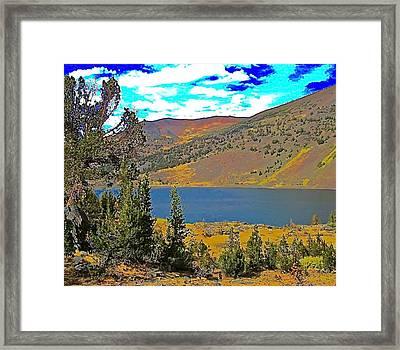 Saddlebag Lake Whitebark Pines Sierra Nevada Framed Print