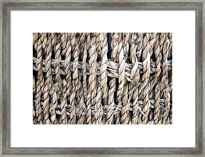 Basket  Framed Print by Amanda St Germain