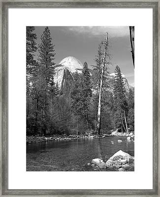 Basket Dome Framed Print