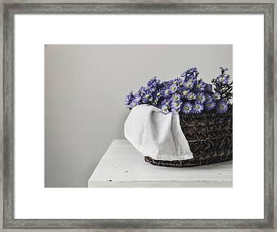 Basket Of Asters Framed Print by Kim Hojnacki