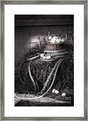 Basket Of Eggs On A Bale Of Hay Framed Print by Sandra Cunningham