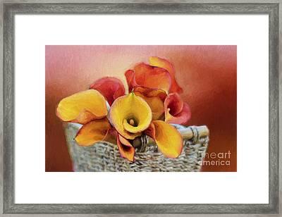 Basket Of Love Framed Print by Darren Fisher