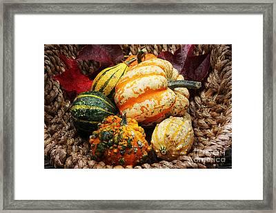 Basket Of Pumpkins Framed Print