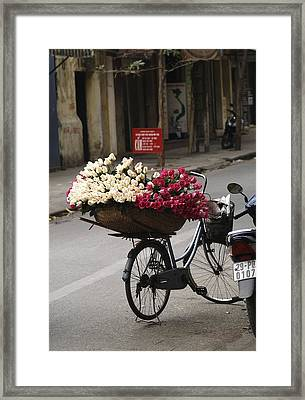 Basket Of Roses Framed Print by Lee Stickels